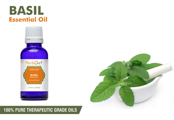 Basil Essential Oil 100% Pure Natural PREMIUM Therapeutic Grade Oils-herbadiet