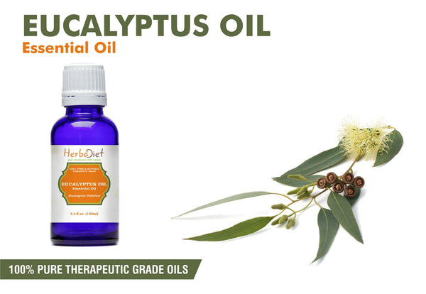 Eucalyptus Essential Oil 100% Pure Natural PREMIUM Therapeutic Grade Oils