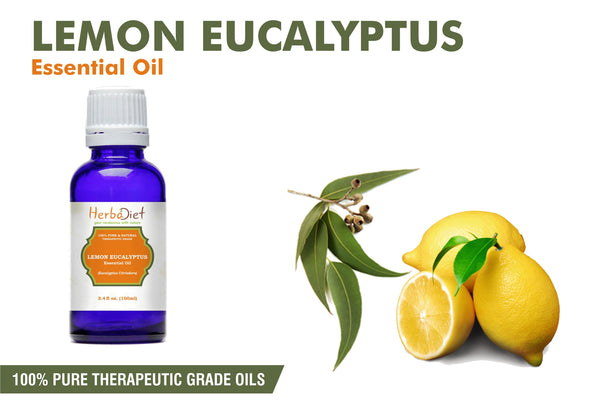 Lemon Eucalyptus Essential Oil 100% Pure Natural PREMIUM Therapeutic Grade Oils-herbadiet