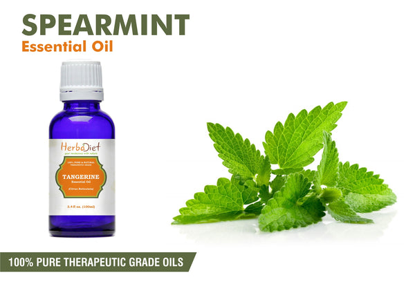 100% Pure Natural Spearmint Essential Oil PREMIUM Therapeutic Grade Oils-herbadiet
