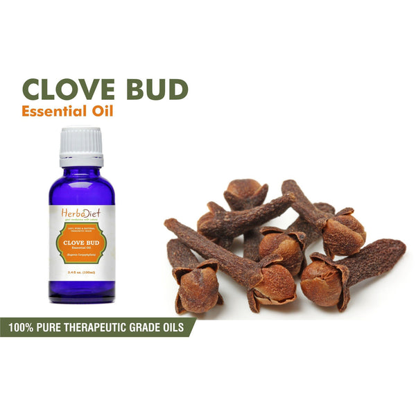 Essential Oil Singles - 100% Pure Natural Clove Bud Essential Oil PREMIUM Therapeutic Grade Oils