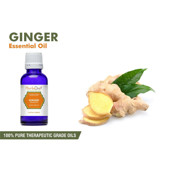 Essential Oil Singles - Ginger Essential Oil 100% Pure Natural PREMIUM Therapeutic Grade Oils