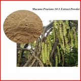 Standardized Extracts - PURE Mucuna Pruriens 10:1 L-Dopa Extract Powder Natural Dopamine Boosts Mood