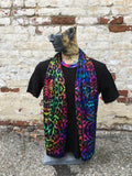 Light Scarf - Rainbow Kitty / Spectral Safari