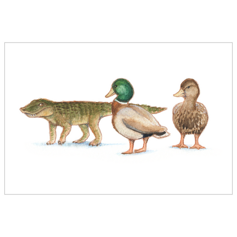 Anatosuchus duck croc postcard with envelope