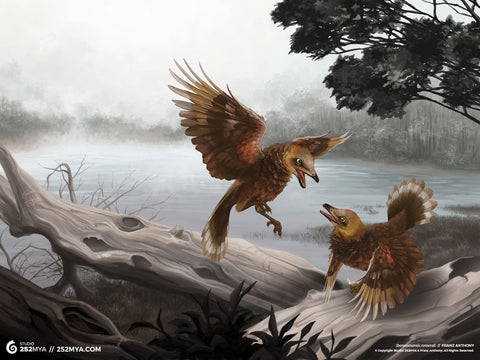 Iberomesornis Digital Wallpaper