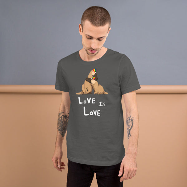 Love Is Love unisex Pride t-shirt