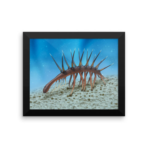 Hallucigenia framed print