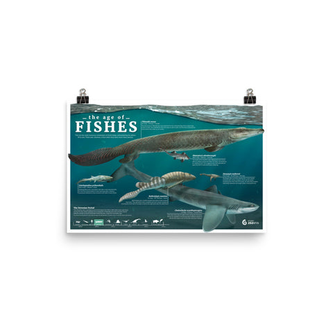 The Age of Fishes poster