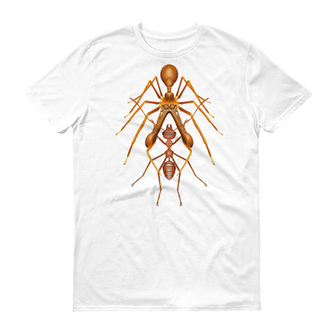Antmimicking spider t-shirt