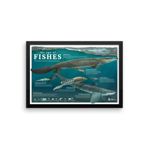 The Age of Fishes framed print