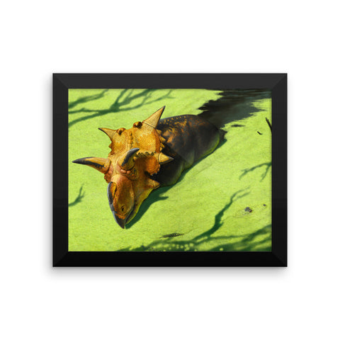 Xenoceratops framed print