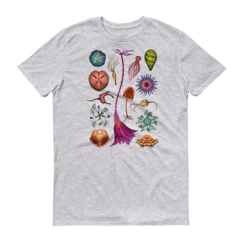 Echinoderms T-Shirt