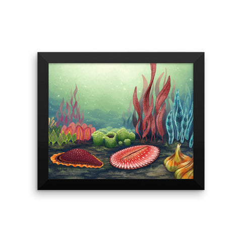 Garden of Ediacara framed print