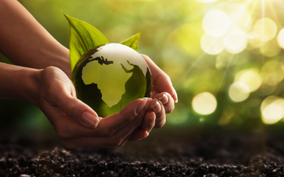 3 Things You Can Do to Help Earth Now
