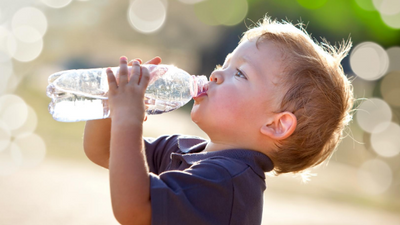The Ugly Truth: The Dangers of Exposure to BPA