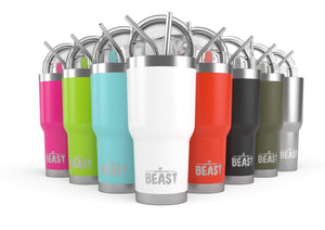 30 oz. stainless steel tumblers with lid and two stainless steel straws - 8 colors to choose from