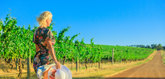 Why Australian Wine Is Better Than You Think