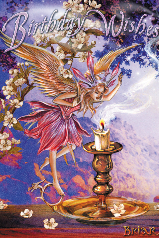 Make a Wish Faerie Greeting Card