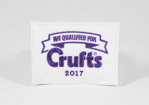 2017 We Qualified Sew On Badge