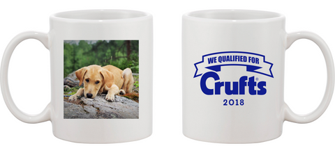2018 We Qualified Personalised Mug