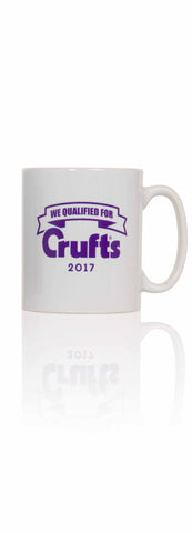2017 We Qualified Mug