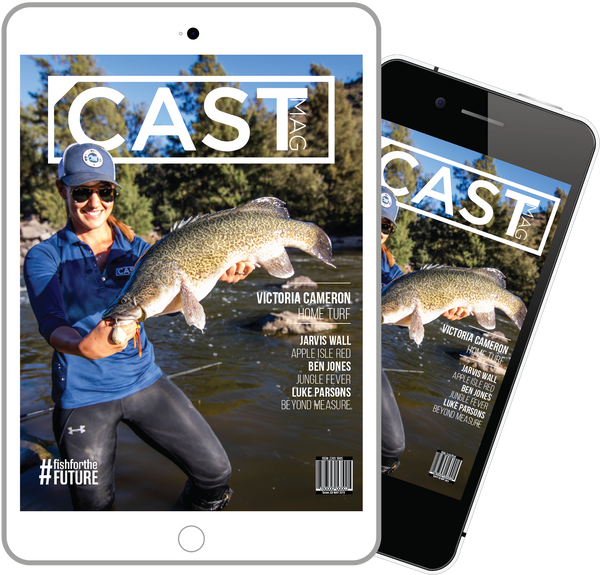 Cast Magazine - Yearly Subscription (Online Magazine Issues 20-23)