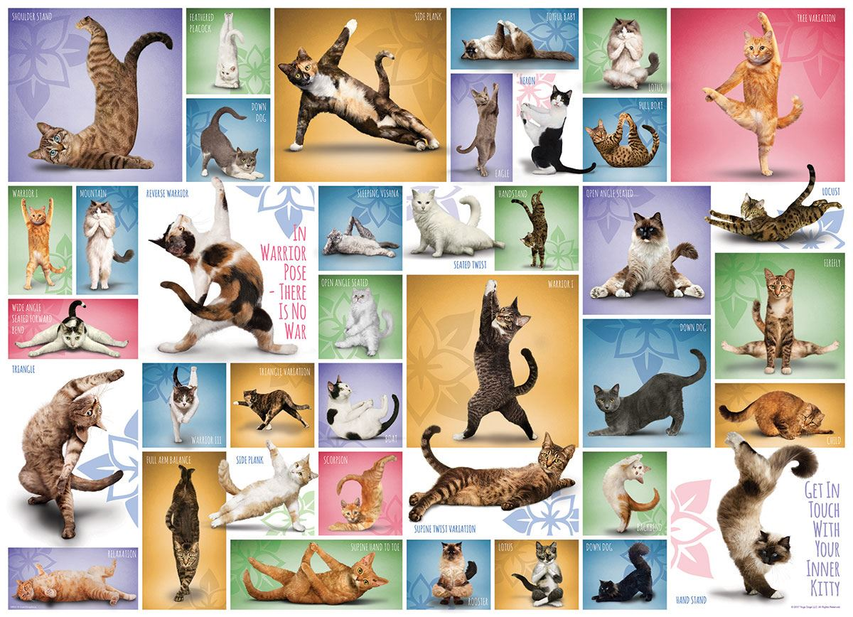 Yoga Cats 1000 Piece Jigsaw Puzzle