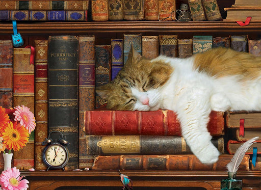 The Cat Nap 500 Large Piece Jigsaw Puzzle