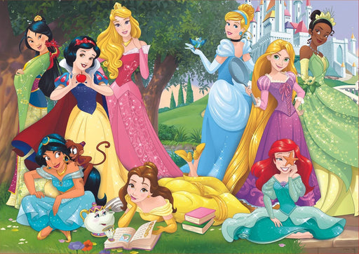 Disney Princesses 500 Piece Jigsaw Puzzle