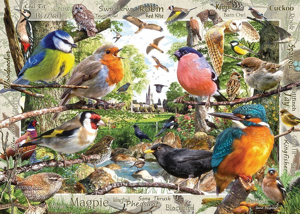 Jigsaw Puzzle - Our Feathered Friends 1000 Piece Jigsaw Puzzle