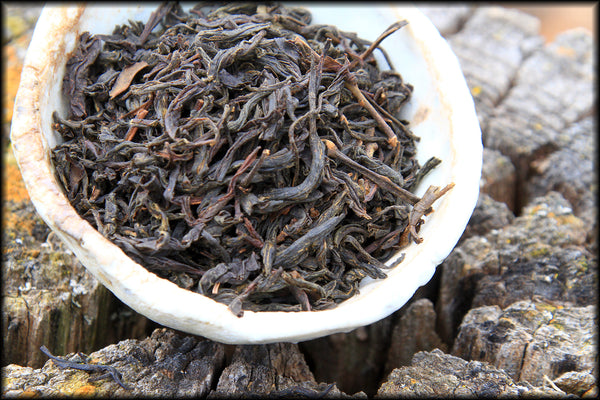Ashes of Autumn, Lapsang Souchong, Spring 2020