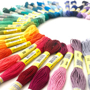 Embroidery Floss - 50 Skeins - Oh Plesiosaur