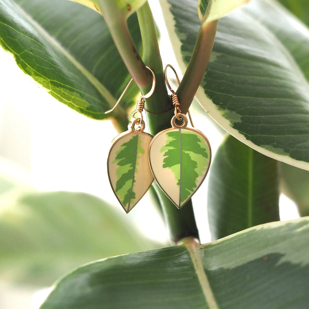Rubber Plant Earrings