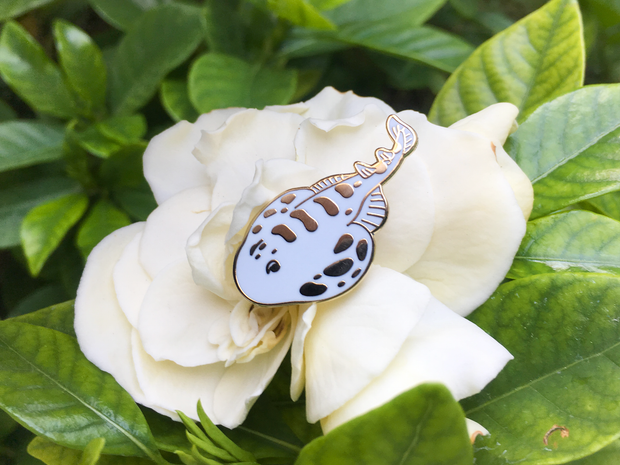 Electric Ray Pin - Oh Plesiosaur