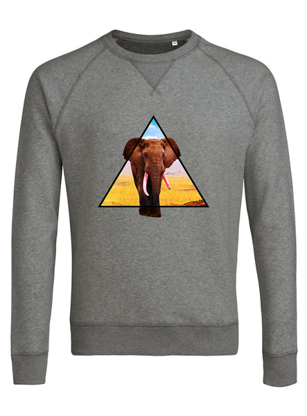 Triangle elephant