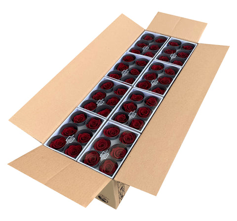 Rose Heads (Bulk 144 Roses) - Burgundy