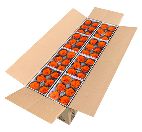 Rose Heads (Bulk 144 Roses) - Orange