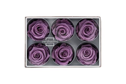 Rose Heads - Lilac