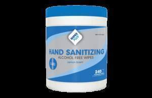 Wipes Plus 33803 Hand Sanitizing Alcohol Free Wipes,  240 Count (7453701382)