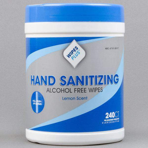 Wipes PlusWipes Plus 33803 Hand Sanitizing Alcohol Free Wipes, 240 Count