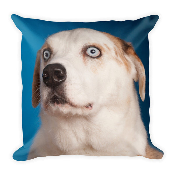 DogRates - Throw Pillow
