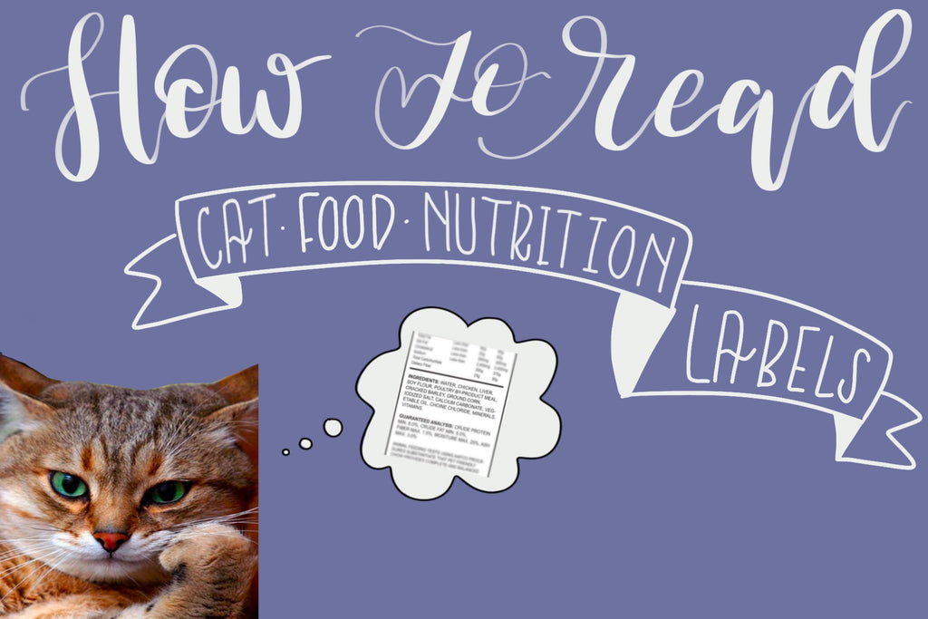 How to Read Cat Food Labels