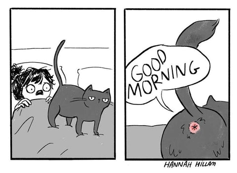 cats and butts comic