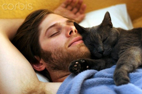 snuggling with a kitty