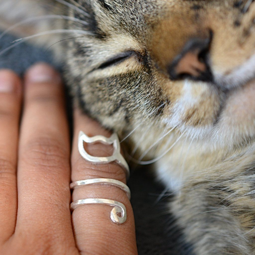 Sterling Silver Spiral Cat Ring from Catify.co. Image with cat, JIMMY