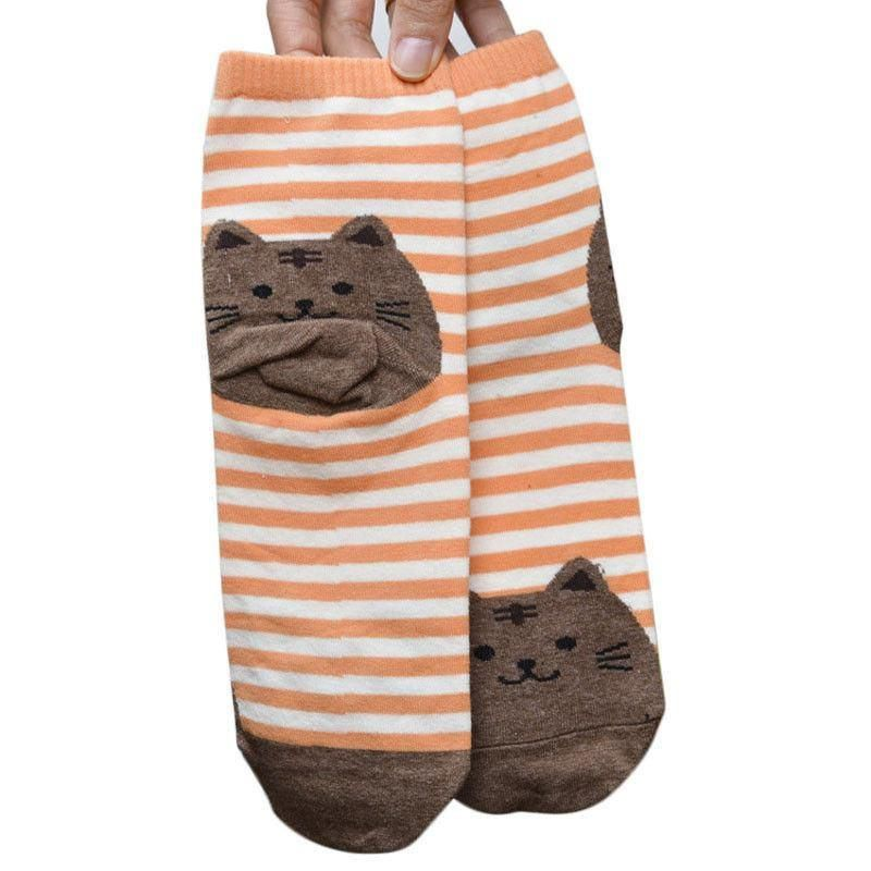 Orange Striped Socks with Brown Fat Cat