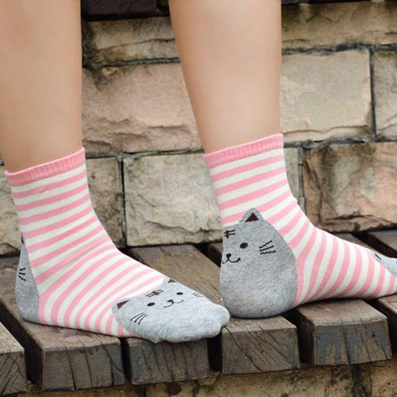 Modeling Pink Striped Fat Cat with Grey Face