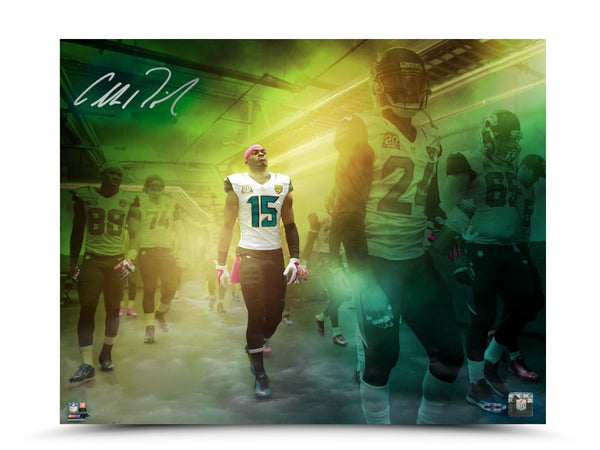 "Allen Robinson Autographed ""Game Time"" 16 x 20 Photo"