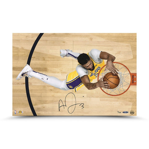 "Anthony Davis Autographed ""Prowess"" 24 x 16"